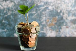 Jar of coins with plant sprouting